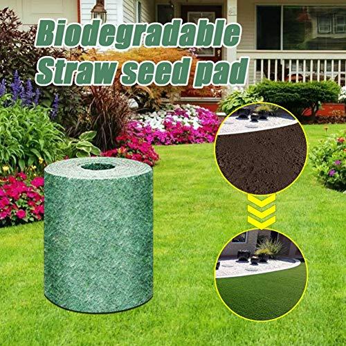 WISREMT Estera de semillas de hierba biodegradable, Almohadilla germinación de semillas paja biodegradable para la plantación de picnic en jardines de césped, 0.2M de ancho, 3M / 10M de longitud