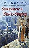 Somewhere A Bird Is Singing