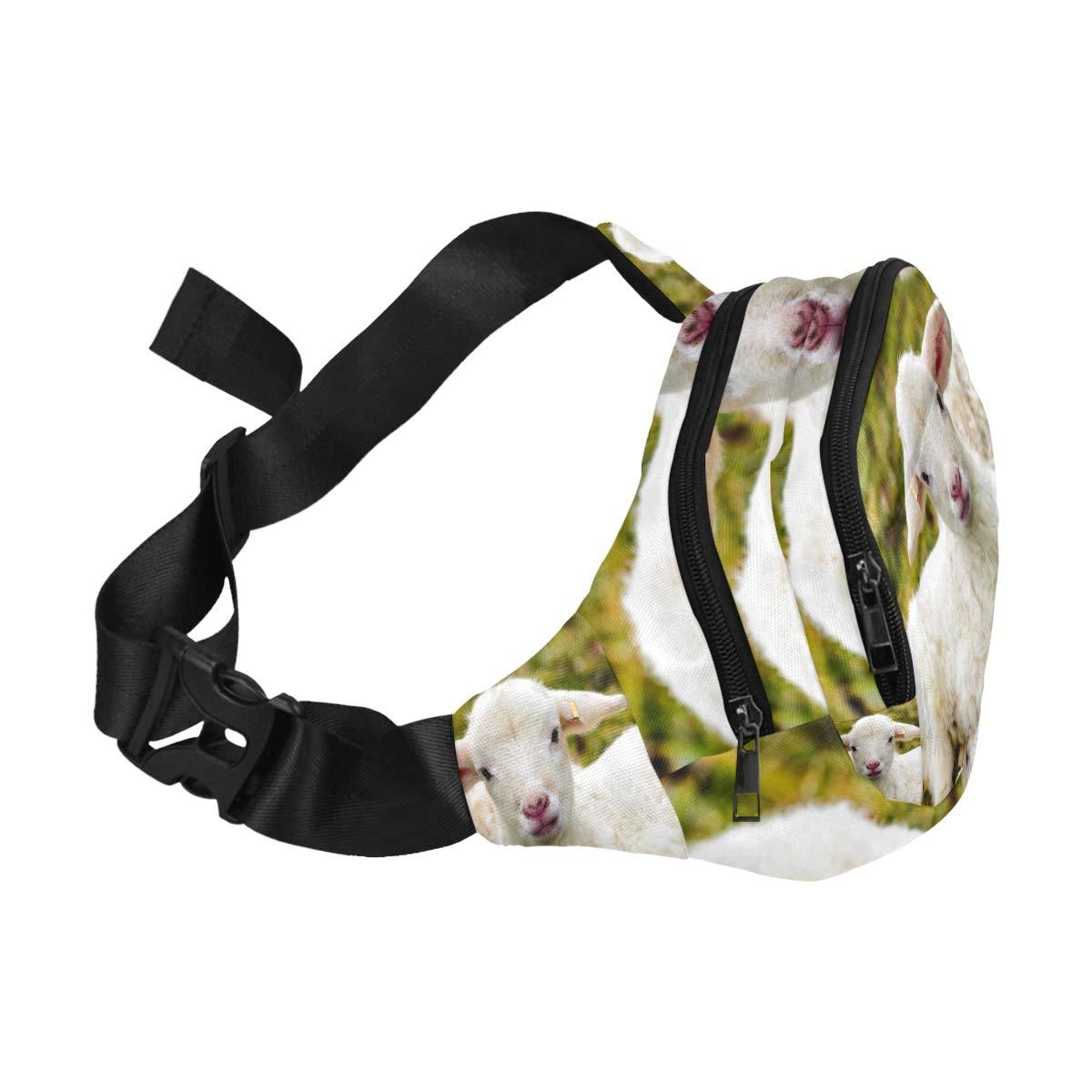 One Sheep In Meadow With November Sun Fenny Packs Waist Bags Adjustable Belt Waterproof Nylon Travel Running Sport Vacation Party For Men Women Boys Girls Kids