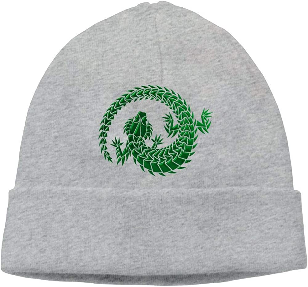 Oopp Jfhg Green Lizard Beanie Knit Hats Ski Caps Men