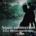 Aquis submersus: Eine Meistererzählung Hörbuch von Theodor Storm Gesprochen von: Klaus Dieter König
