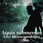 Aquis submersus: Eine Meistererzählung | Theodor Storm