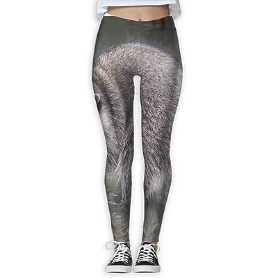 EWDVqqq Women/Girl Yoga Pant Raccoons High Waist Fitness Workout Leggings Pants