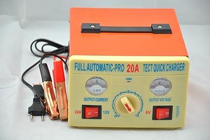 Amazon.com: 6 V 12 V 24 V 20 A Cargador de batería de ácido ...