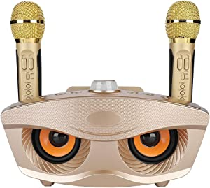 Zer one Wireless Microphone Karaoke Set, 2 Handheld Karaoke Microphone Home Karaoke System Home Karaoke kit Home KTV Speaker for KTV Player Home Party(Gold)