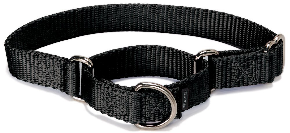 PetSafe Martingale Dog Collar