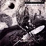 Secrets of the Beehive by David Sylvian (2004-01-01)