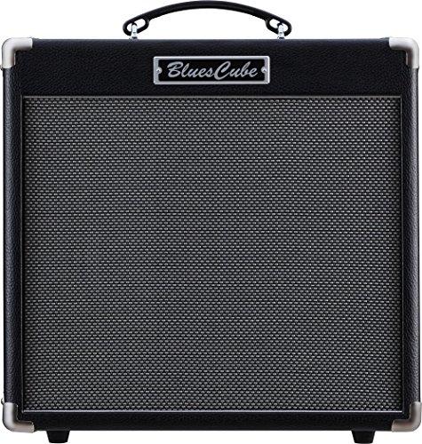 (Roland Guitar Combo Amplifier, 49 Keys (BC-HOT))