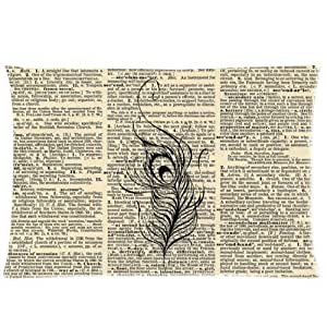LarryToliver You deserve to have Plush cloth 20 X 30 inch pillowcase Peacock Feather On Vintage Dictionary Page best pillow cases(two sides)