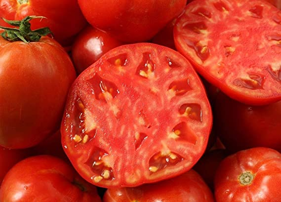 NON/'-GMO very early super prolific 15 Jetsetter  Hybrid Tomato seeds