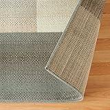 SUPERIOR Designer Clifton Collection Area Rug
