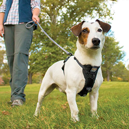 Image of Kurgo TFSH-XS-1174 Tru-Fit No Pull Dog Easy Walking Quick on and Off Harness with Pet Seat Belt Tether for Car, X-Small, Black