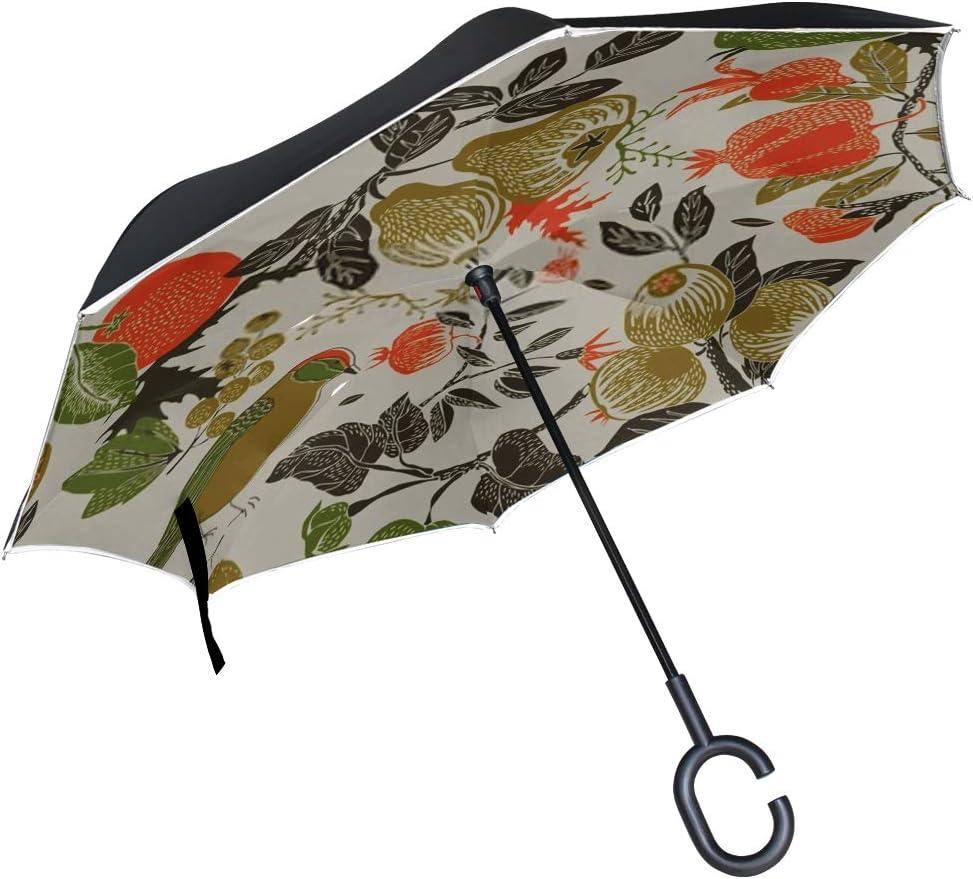 Double Layer Inverted Inverted Umbrella Is Light And Sturdy Fruit Garden Bird Seamless Pattern Reverse Umbrella And Windproof Umbrella Edge Night Ref