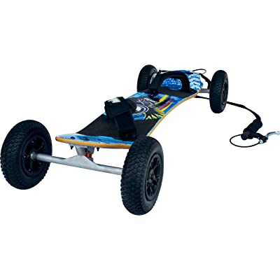 Atom 95X MountainBoard : Longboard Skateboards : Sports & Outdoors