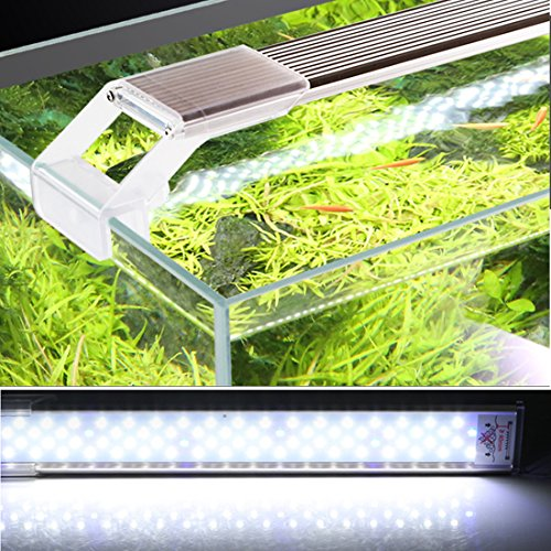 Blue Led Light For Plant Growth