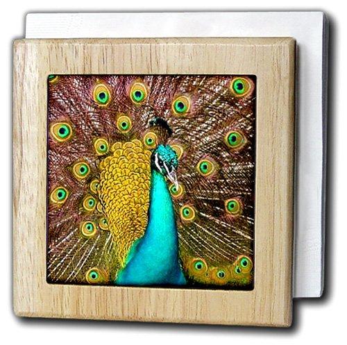 鳥 – カラフルなピーコック – タイルナプキンホルダー 6 inch tile napkin holder nh_959_1 6 inch tile napkin holder  B000MBPWDC