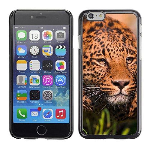 """Premio Sottile Slim Cassa Custodia Case Cover Shell // V00003565 léopard en cours d'exécution // Apple iPhone 6 6S 6G PLUS 5.5"""""""