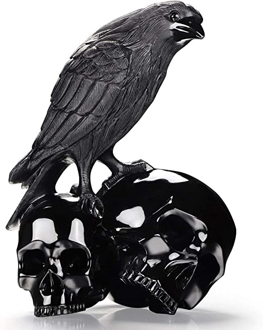 Crystal Carving #C-549 Bird Skull Jumbo 7 Obsidian Raven Skull Crystal Bird Skull Shamanic Crystal Raven Skull