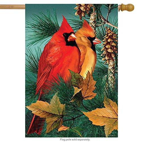 Fall House Flags - Autumn Splendor Cardinals House Flag Fall Birds 28