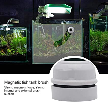 Cleaning & Maintenance Floating Magnetic Cleaning Brush Aquarium Fish Tank Glass Algae Scraper Cleaner