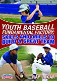 Youth Baseball Fundamental Factory: Skills and Drills to Build a Great Team