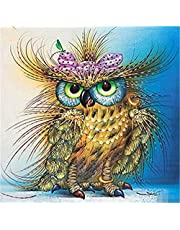 Kasting 5D Diamond Painting Kits for Adults Full Drill, DIY Cross Stitch Rhinestone Mosaic Picture Artwork for Home Wall Decor Gift owl 30X30cm