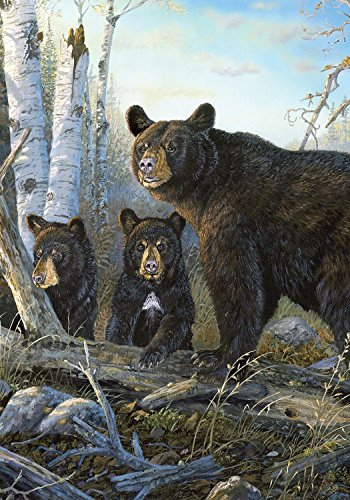 (Briarwood Lane Wild Black Bears House Flag Outdoors Natural Wildlife 28