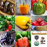 How Big Is a California King David's Garden Seeds Collection Set Pepper Bell MK934 (Multi) 8 Varieties 400 Plus Seeds (Open Pollinated, Heirloom, Organic)