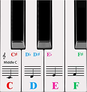 QMG Piano Stickers for 61-Key Keyboard, Bright Colorful Stickers, Perfect Visual Tool for Kids and Beginner Learning Piano, Transparent and Removable, Leaves No Residue, Made in USA