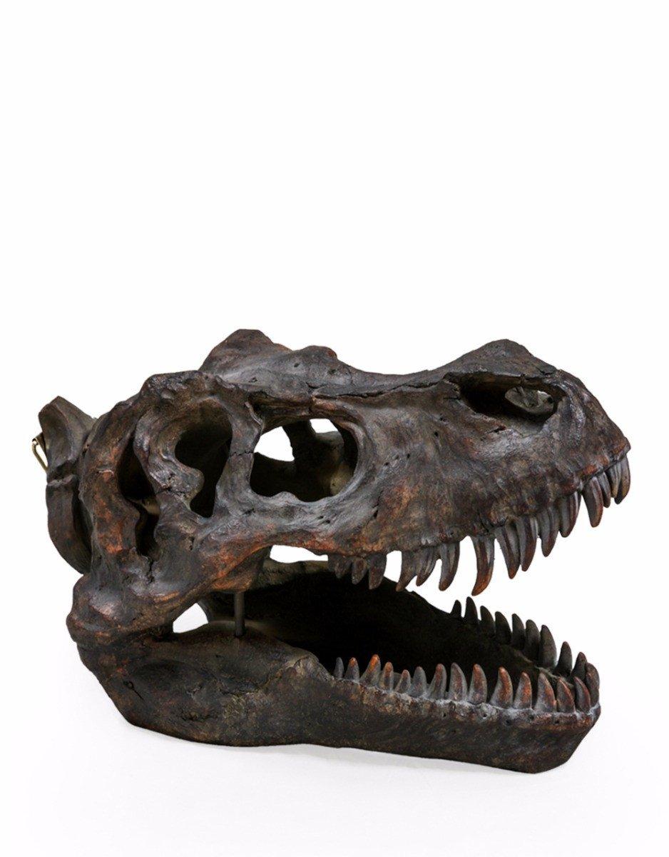 Large 36cm Tyrannosaurus T Rex Wall Hanging Head Bust Dinosaur