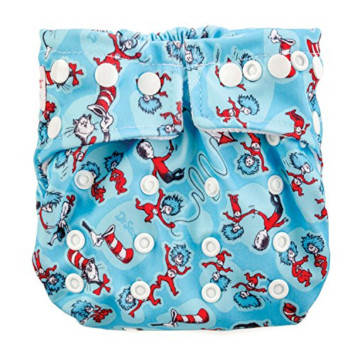 Bumkins Snap One Cloth Diaper product image