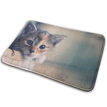 MGTXL Felpudo Antideslizante para Interiores con diseño de Gatos de 15,7 x 23,5 Pulgadas: Amazon.es: Hogar