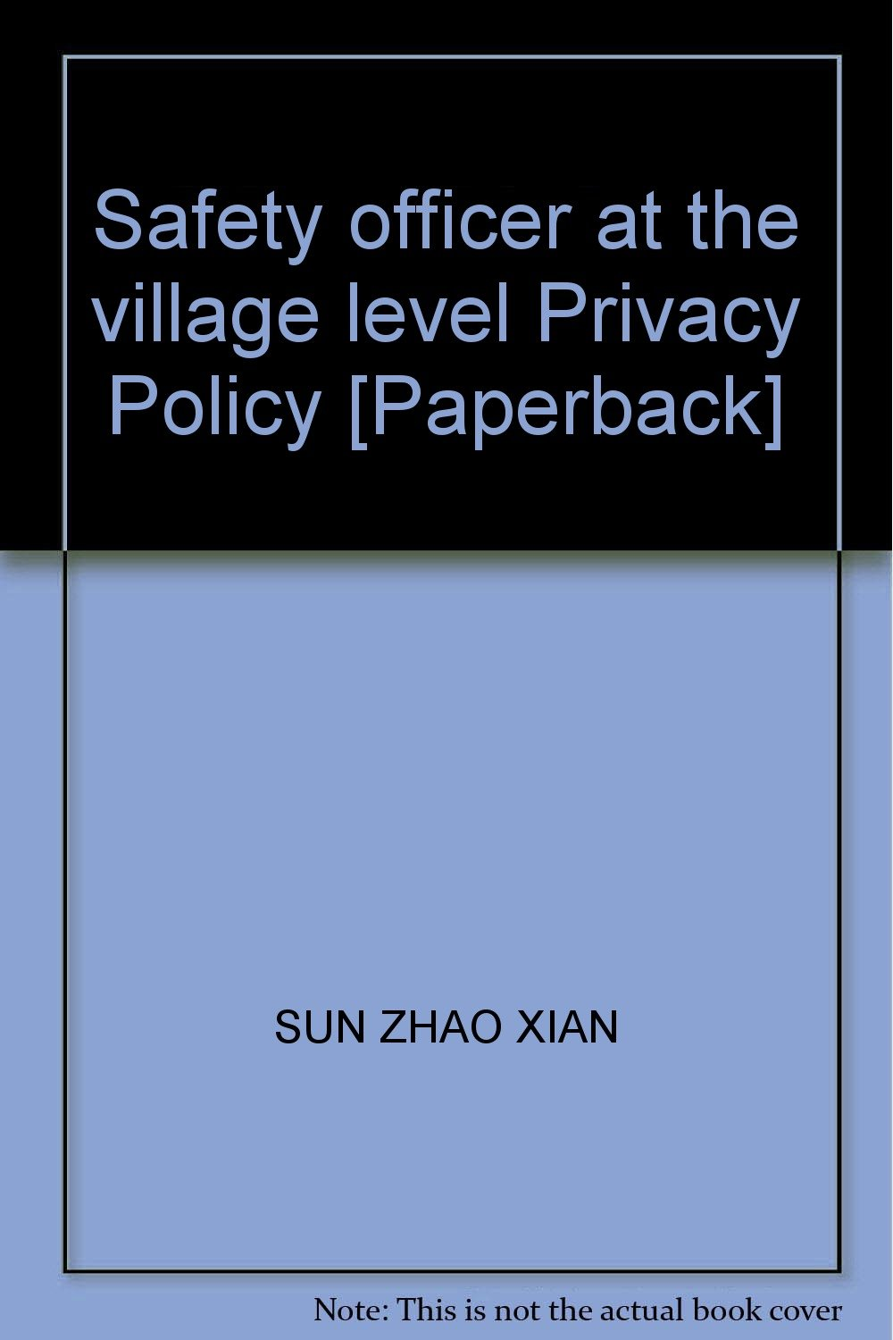 Download Safety officer at the village level Privacy Policy [Paperback] pdf epub