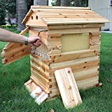 Auto Flow Beehive 7pcs Flow Frame Super Box with Free Flow Frame