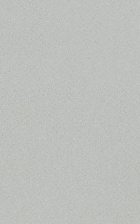 Poster Palooza Light Grey 16x20 Backing Board - Uncut Photo Mat Board