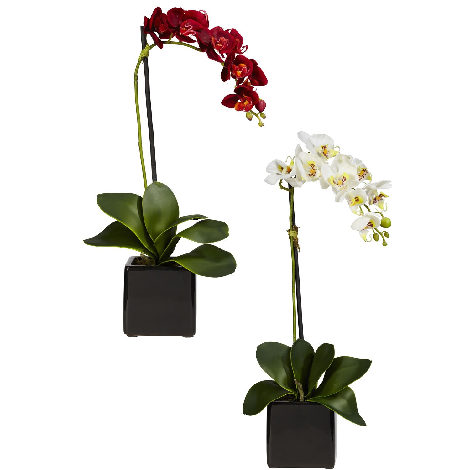 Nearly Natural 4757-S2 Phaleanopsis Orchid with Black Vase Decorative Silk Arrangement, Red and White, Set of 2