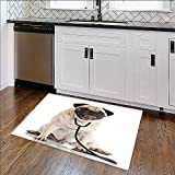 Stain Resistant Rug dog with stethoscope. Non-Toxic, Non-Slip W35'' x H23''