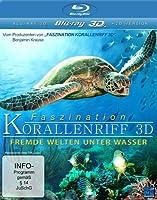 Faszination Korallenriff - Fremde Welten unter Wasser