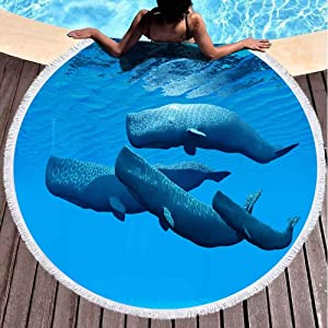 Capsceoll Round Beach Towels for Adults, Sperm Whale Family Family Swim Together Share Close Between Them a Bond 60 X 60 Inch Large Beach Towel for Children,Ladies and Boys