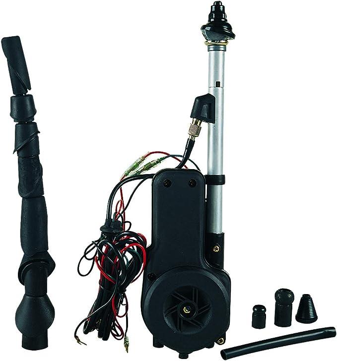 Amazon.es: Bottari 22418718 Antena Electrica Radar