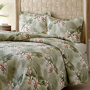 Amazon Com 3 Piece Tan Palm Tree Quilt Full Queen Set