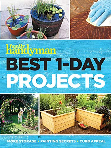 Book Cover: Best 1-Day Projects