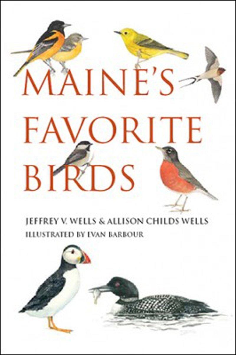 Read Online Maine's Favorite Birds pdf epub