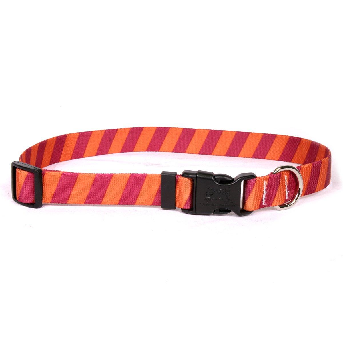 Yellow Dog Design Team Spirit Maroon and Orange Dog Collar with ID Tag System-Medium-3/4 Neck 14 to 20''/4''