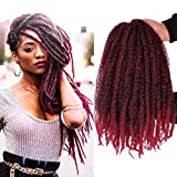 Marley Twist Crochet Braiding Hair Synthetic Afro Kinky Twist Crochet Hair Mixed Colour Curly Hair Extensions Pack of 3 Bundles (T1B-Bug#)