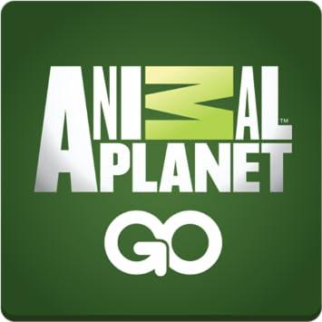 animal planet live tv apk