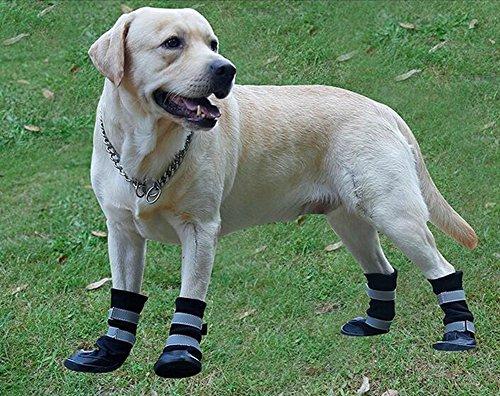 Riflettenti Lvrao A Velcro Per Cinghie Nero Protezione S Con Domestici Animali nero Zampe Scarpe Medio Antiscivolo Impermeabile Stivali Grande Cani g7r7tA