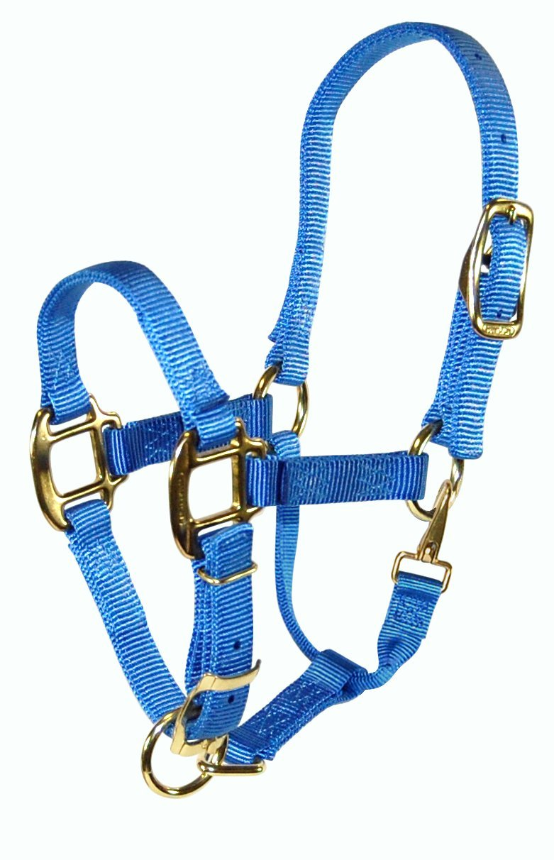 Hamilton 3 4  Adjustable Quality Pony Halter with snap, Berry bluee