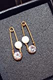 Generic New fashion trend in Europe and America earrings Korean temperament long section of temperament zircon earrings earring pins women with jewelry