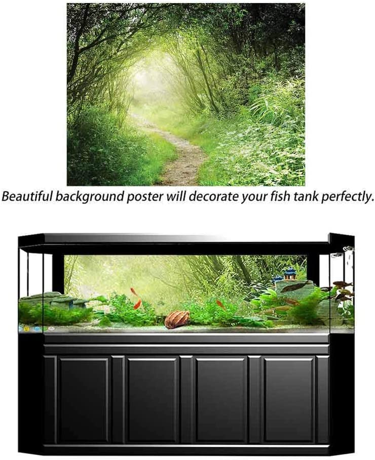 ScottDecor Woodland Undersea Backdrop for Photography Forest Narrow Path Daisy Decals Poster L24 X H12 Inch
